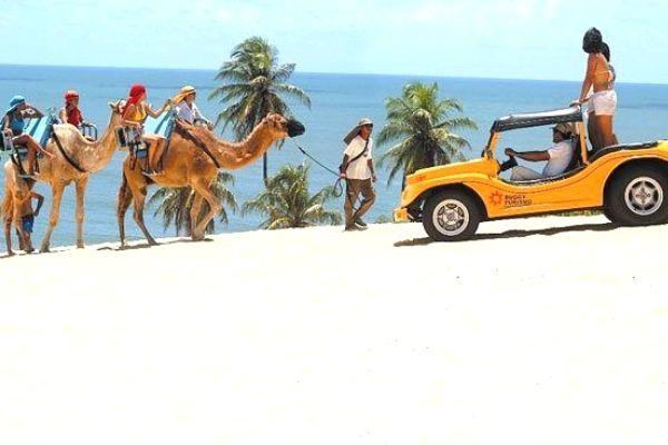 Negócios Para Montar na Praia